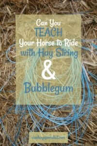 Can you teach your horse to ride with hay string and bubblegum?