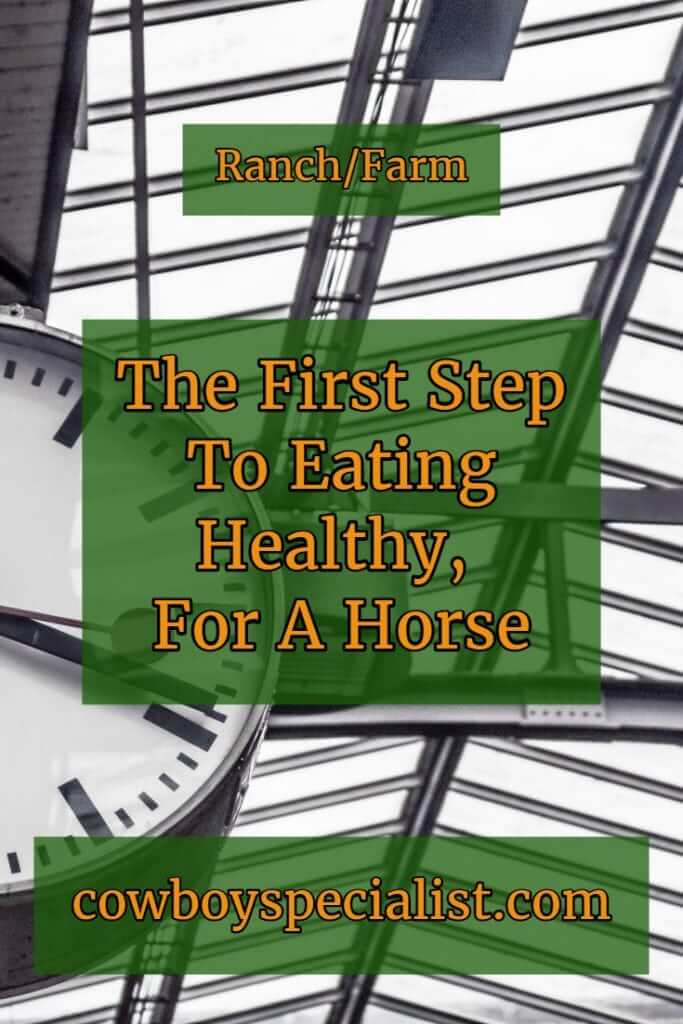 The First Step To Eating Healthy, For A Horse
