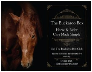The Buckaroo Box: Horse and Rider Care Made Simple