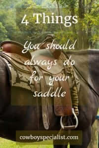 Saddle Care: 4 Things You Should Always Do For Your Saddle