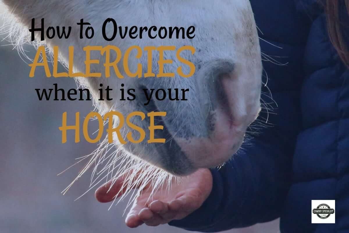 How to overcome Allergies when you are allergic to your horse.