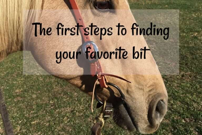 The first steps to finding your favorite bit