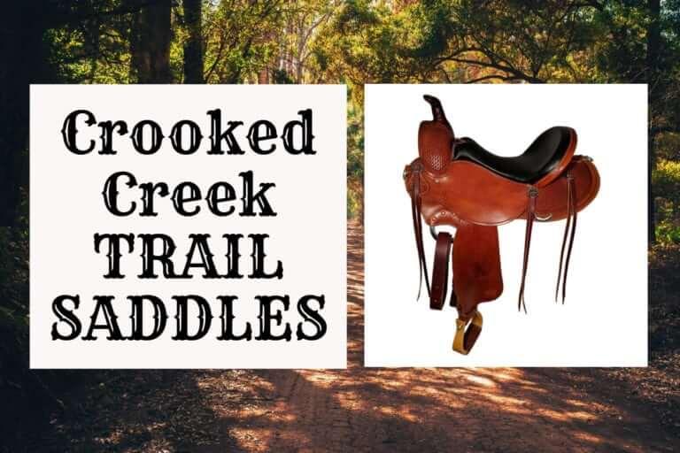 Crooked Creek Trail Saddles