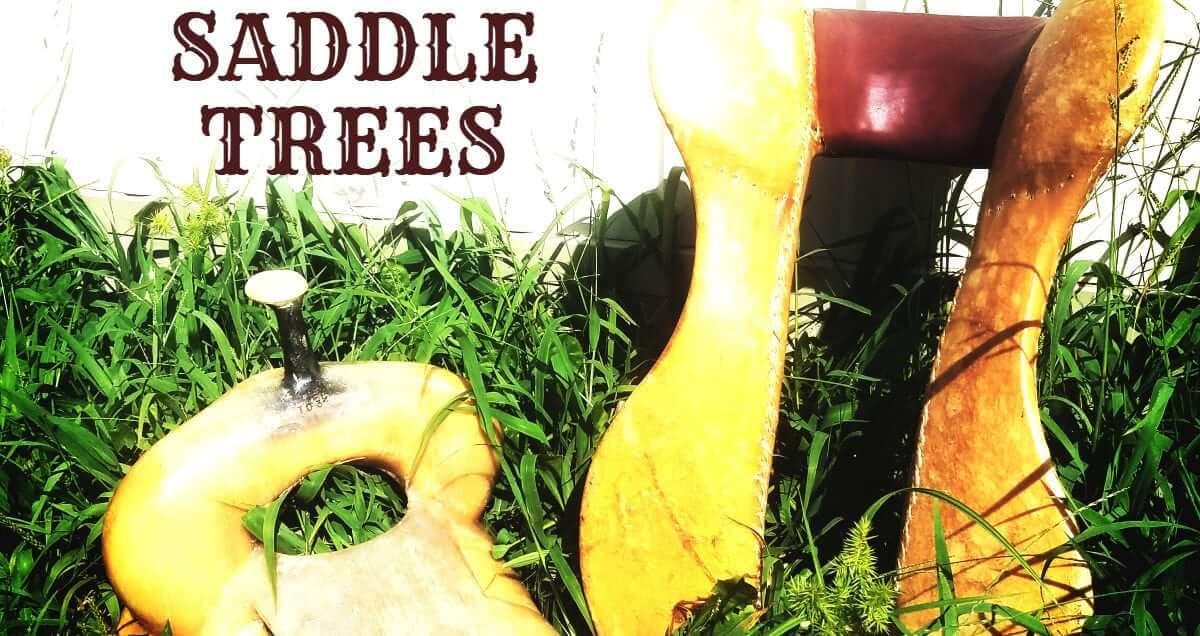 Lets Talk Saddle Trees
