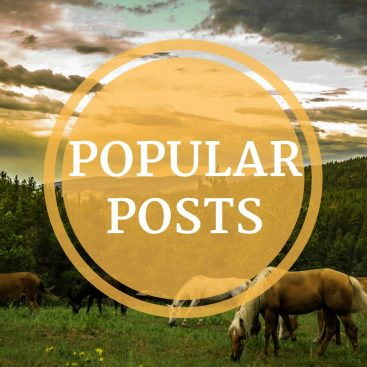 Popular Posts @ Cowboy Specialist